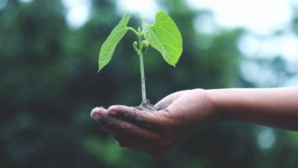 La Journée de la Francophonie 2021- Biodiversité et Santé